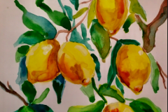 Anika-ReddyASPT-3300_LemonsFINAL_Watercolor