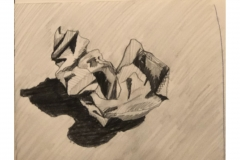 PaperSketch_Nelson_ASPM3300